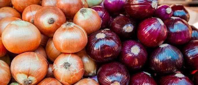 onions grocery