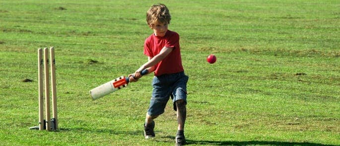 A boy playing cricket at a BBQ event