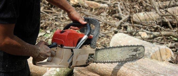 chainsaw noise hazards