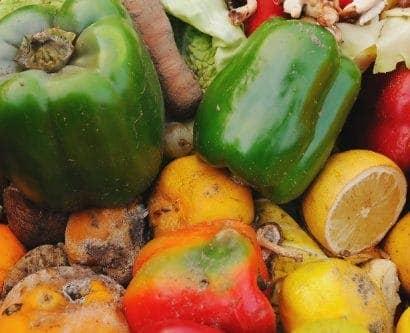 restaurant-food-waste