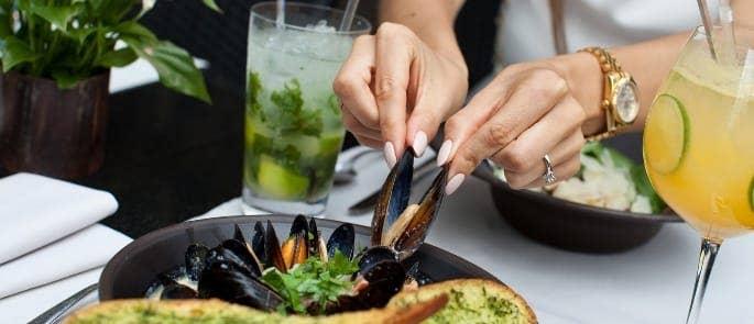 molluscs mussels