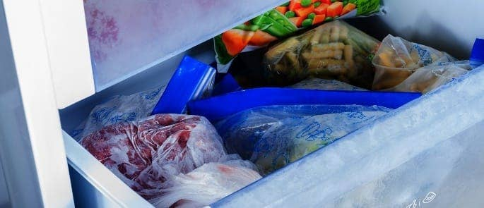 freezer food preservation