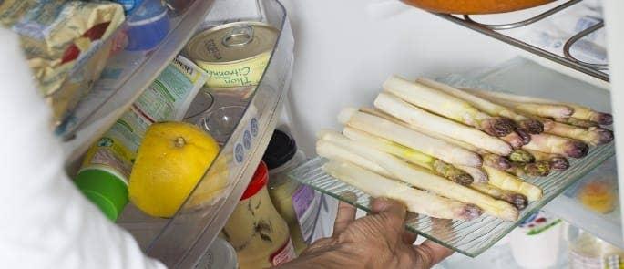 fridge food preservation