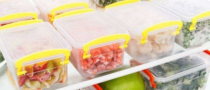 frozen food preservation