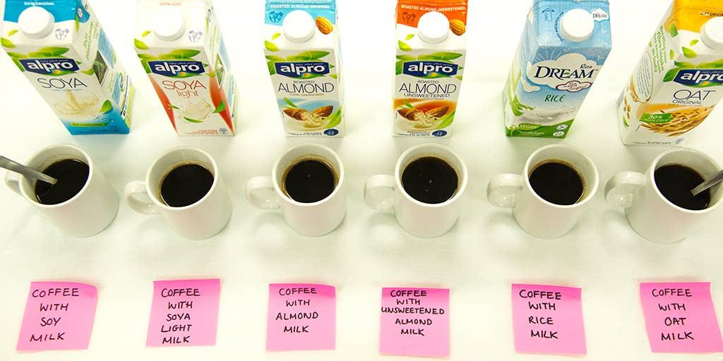 Best Alternative To Milk A Guide To Taste Storage Coffee