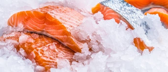 Raw salmon on ice