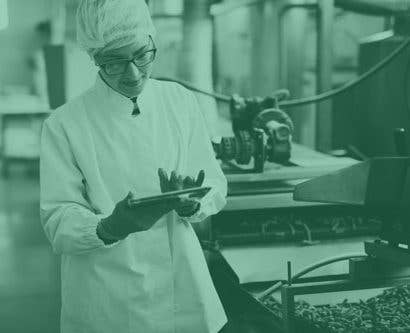 food safety manager conducting internal audit