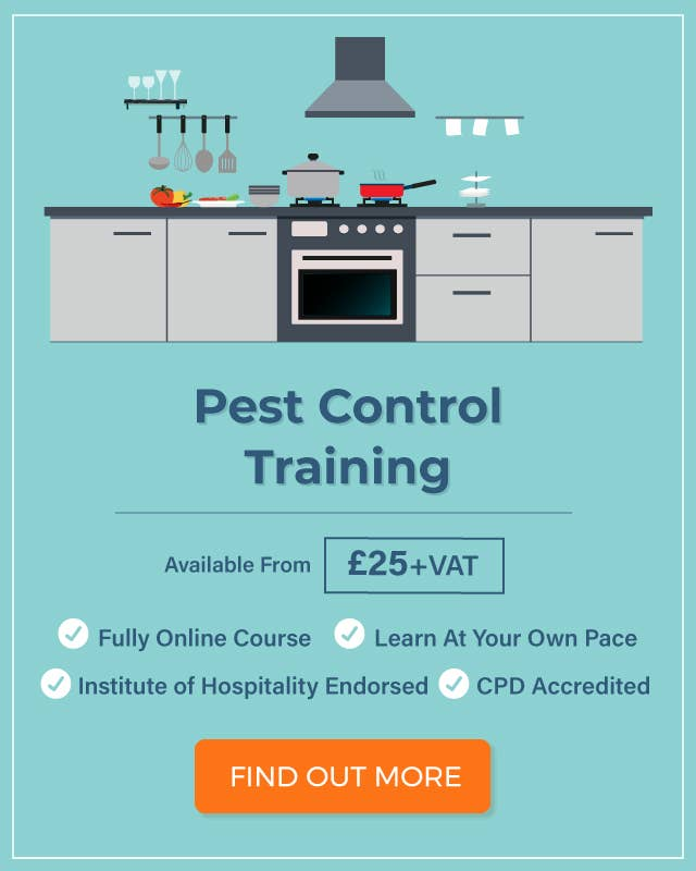8baa25da64d Rats in a Restaurant | Pest Control Procedure & Advice