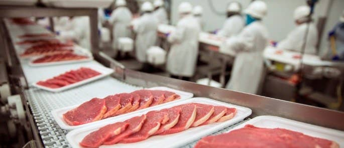 Meat at a processing factory being packaged