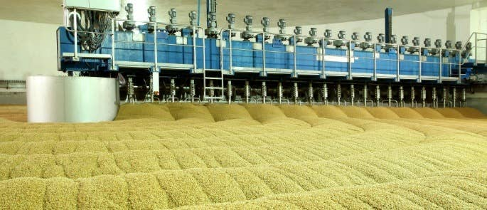 Large storehouse of malt with an automatic arm working through stirring it.