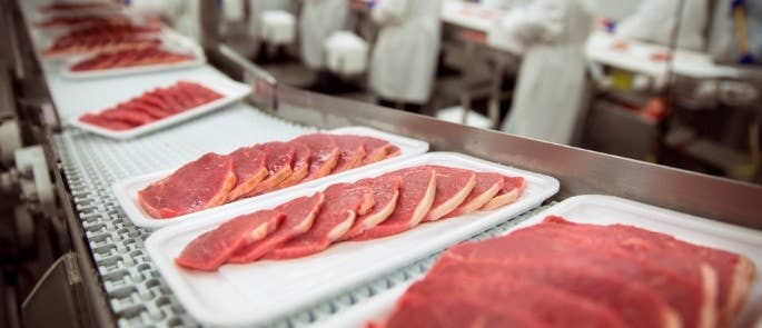 5 slices of red meat on polystyrene trays moving along a conveyor belt in a meat processing plant.