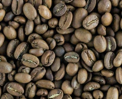 Coffee Beans Featured Image