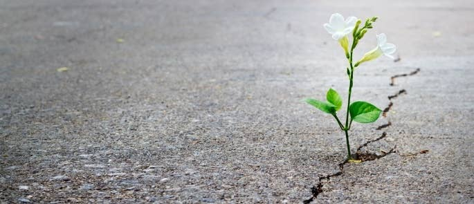 Resilience in the workplace concept