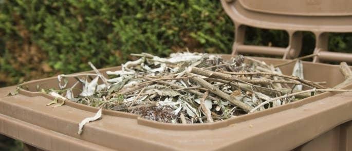 Brown garden waste wheelie bin