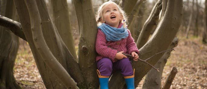Child sitting in tree looking up at sky