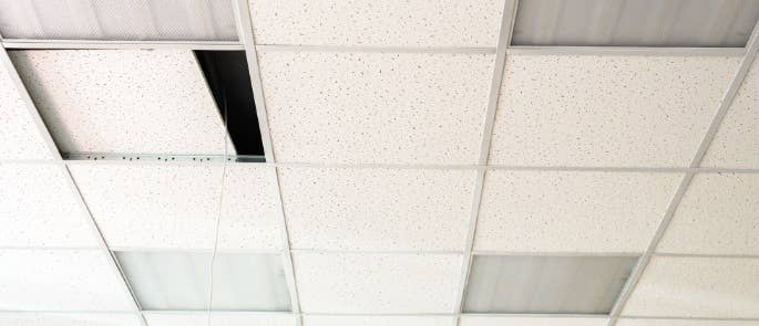 Ceiling tiles in a building that may contain asbestos