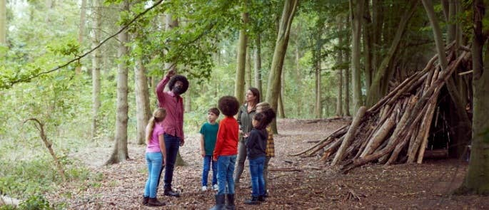 Forest school leader and group looking at tree