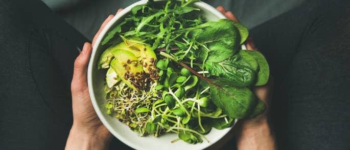 Vegan Food Bowl