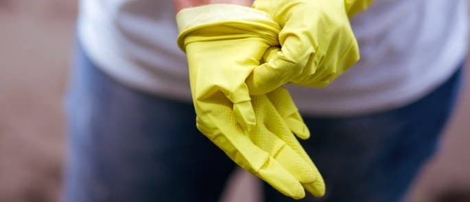 Cleaner putting on cleaning gloves