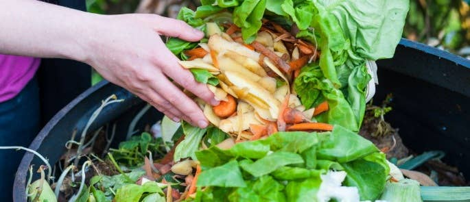 A woman demonstrating sustainable food practices